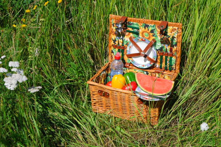 Picnic basket A filled picnic basket standing in green grass