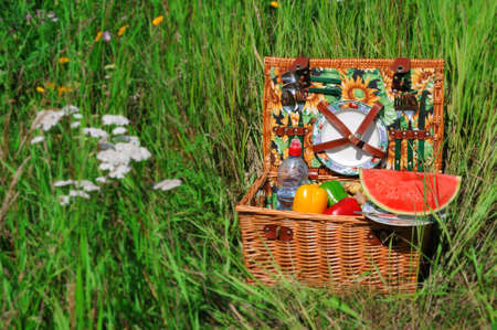 Picnic basket A filled picnic basket standing in green grass Stock Photo - 14608229