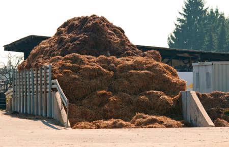 manure: Dungheap dunghill muckheap bog hole manure pile muck hill