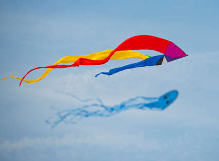 rise fall: kite flying festival with lots of different colorfull kites flying in the sky