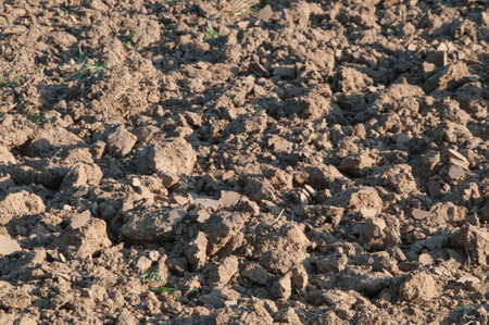 acre field cropping soil Stock Photo