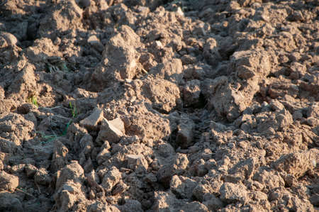 corrugation: acre field cropping soil Stock Photo