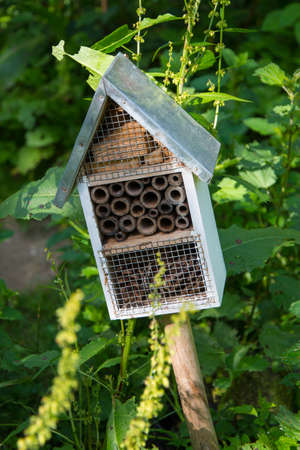 hotbed: Insect Hotel