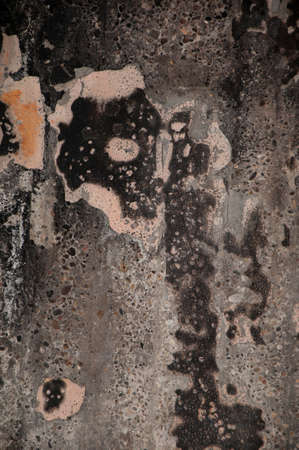 detriment: texture of a fire wall damadged