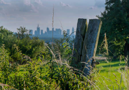 vicinity: Skyline of Frankfurt at Main behind rural scene with bushes to trees in front Stock Photo