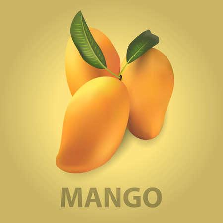 mango: mango