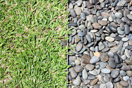 Gravel and grass Stock Photo - 13196954
