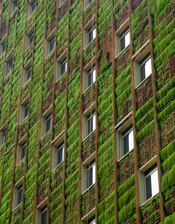 녹색 생태 건축