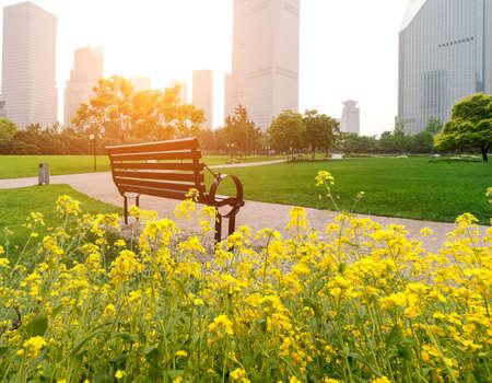 banc de parc: Shanghai Lujiazui quartier financier, des bancs de parc Banque d'images