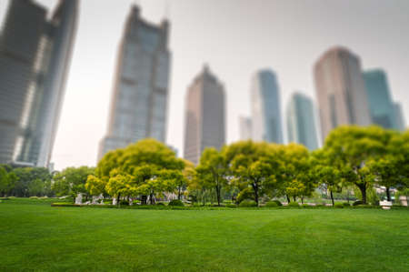 corporate building: city park with modern building background in shanghai
