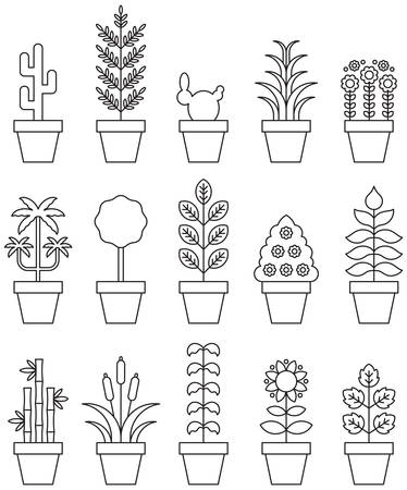 potted plant cactus: HOUSEPLANTS outline icons