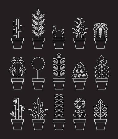 Zimmerpflanzen - weiße Linie Symbole