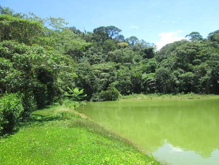 paisaje amazónico de Colombia
