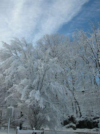 ペンシルベニア州ピッツバーグ近く冬 写真素材