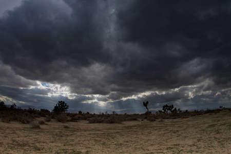 Landcaster desert