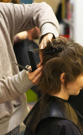 Hairdresser working Stock Photo - 17151701