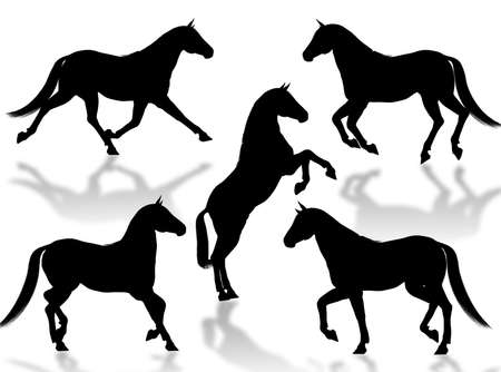 racecourse: Black horse silhouettes in different poses and attitudes Stock Photo