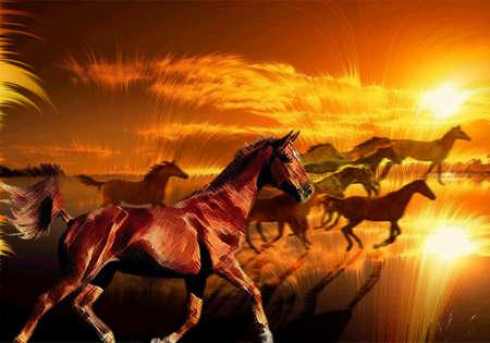 カラフルな夕日に対して実行されている野生の馬 写真素材