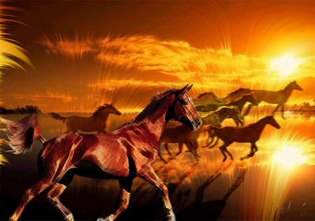 Wild horses running against a colourful sunset