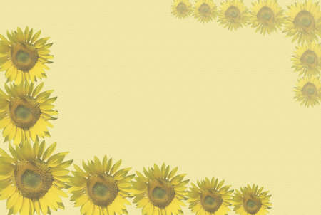 A sunflowers background to welcome hot season Stock Photo - 820173