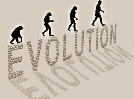 Illustration  about man�s evolution and a writing made of little stones illustration