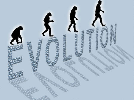 evolved: Illustration  about man's evolution and a writing made of little stones