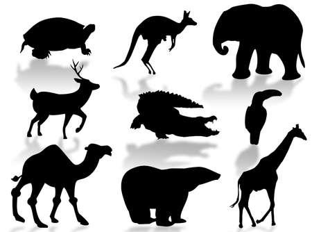 Wild animals silhouette to represent wildlife