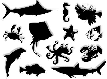Sea-life black silhouette for this sea-life background Stock Photo