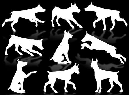 wag: Dog silhouette in different poses and attitudes