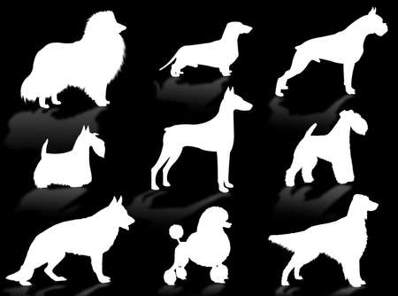 defended: Dogs silhouette to represent different dog breeds Stock Photo