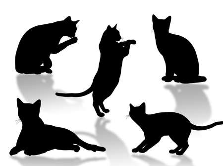 Black cat silhouette in different poses and attitudes Stock Photo
