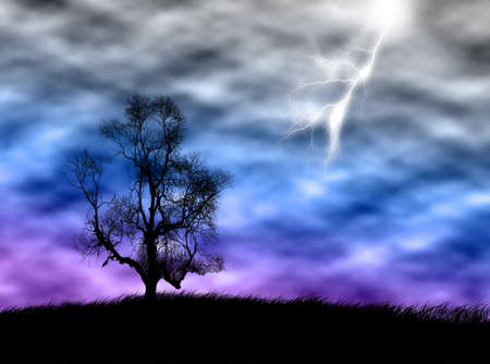 chlorophyll: Tree silhouette on the field against a sunset sky