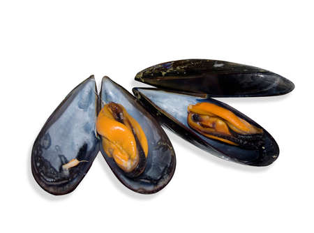 Some mussels just cooked for a good meal Stock Photo