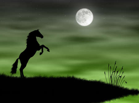 mammalian: Wild horse silhouette in the moonlight landscape