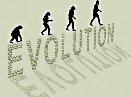 Illustration  about man's evolution and a writing made of little stones