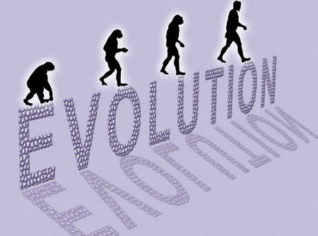 erect: Illustration  about man�s evolution and a writing made of little stones Stock Photo