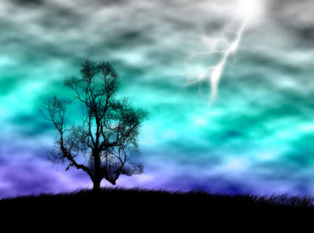 stormy sky: Tree silhouette on the field against a stormy sky
