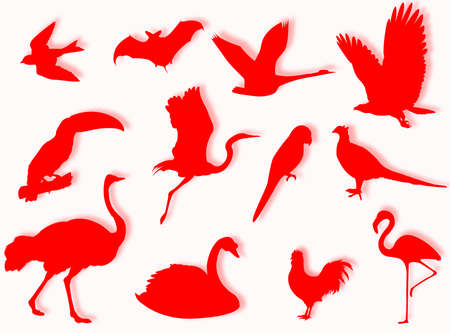 species: Birds silhouette to represent different species Stock Photo