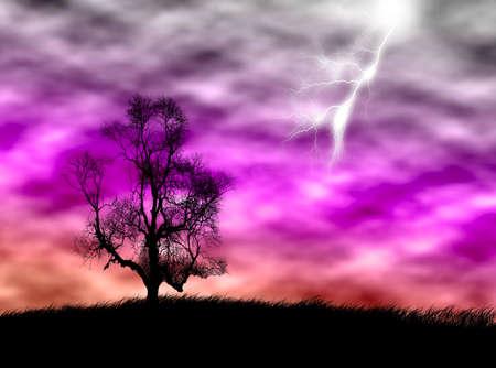 嵐の空に対してフィールド上の木のシルエット