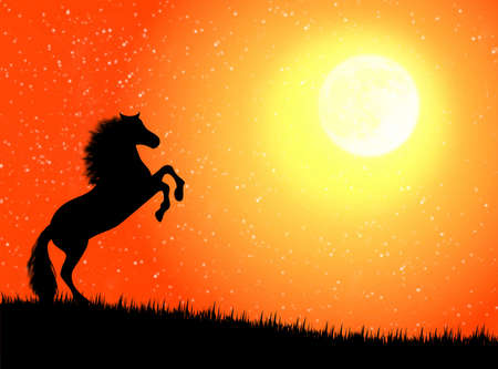 Black wild horse against a moonlight night