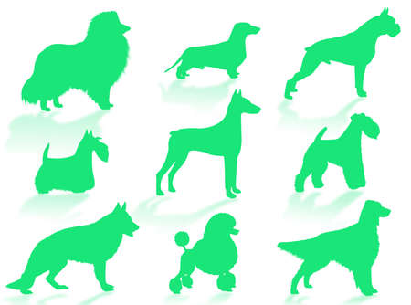 stray: Dogs silhouette to represent different dog breeds Stock Photo