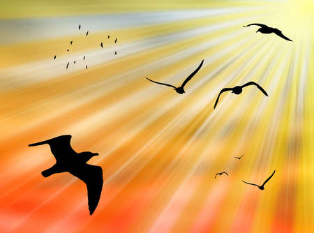 Birds flying in the sky against a colorful sun Stock Photo