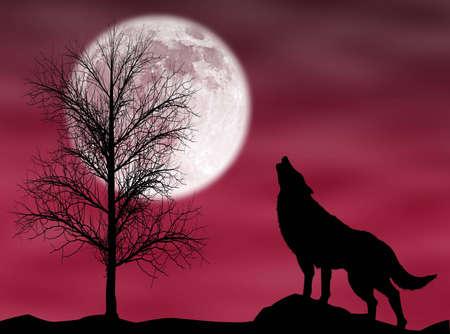 ムーンと暗いと曇りの夜にハウリング狼