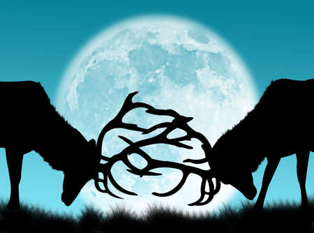 夜と月の戦いの木びき台