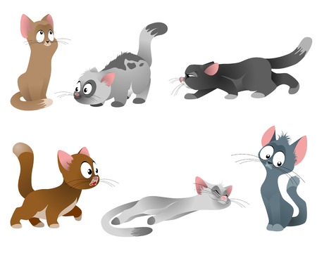calico: Vector illustration of a six cats set