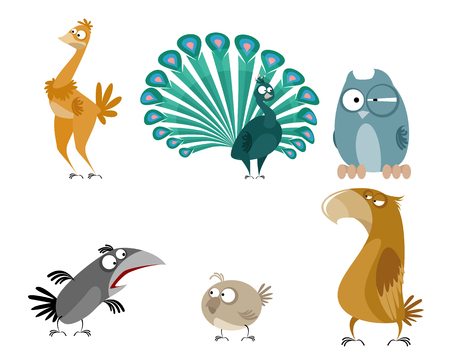 Vector illustration of a six birds set
