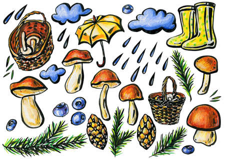Autumn forest concept. Mushroom picking. Porcini mushrooms, wicker baskets, a yellow umbrella, green polka dot boots, pine branches and cones, blueberries and thunderclouds with raindrops.