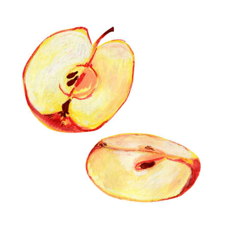 Half a red apple isolated on a white background. A quarter of ripe fruit with pulp and seeds. Hand-drawn oil pastel illustration for food label design. Eco product.