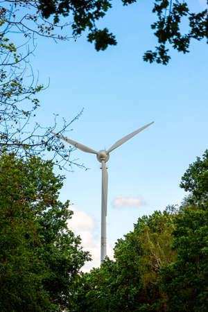 A single wind generator with three blades against a blue sky, photographed through bushes and trees.