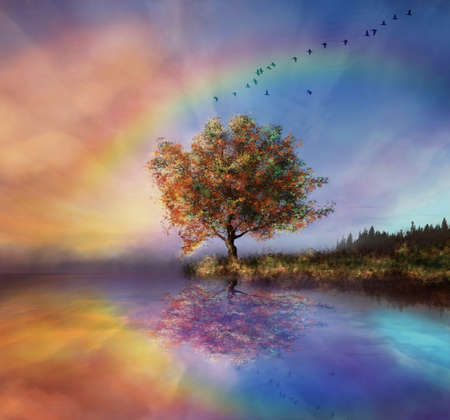 manipulated landscape with a flowered tree and rainbow Standard-Bild